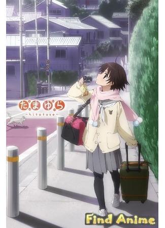 аниме Тамаюра [ТВ-1] 21.11.11