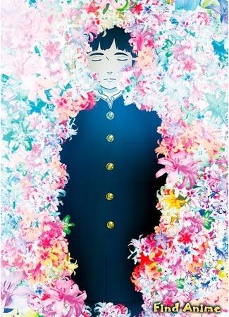 аниме Многоцветье (Colorful) 01.12.12