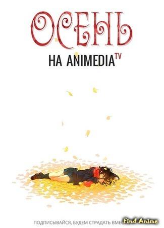 Переводчик Animedia 10.10.14