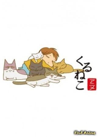 аниме Кошачьи истории (Kuruneko) 13.01.15