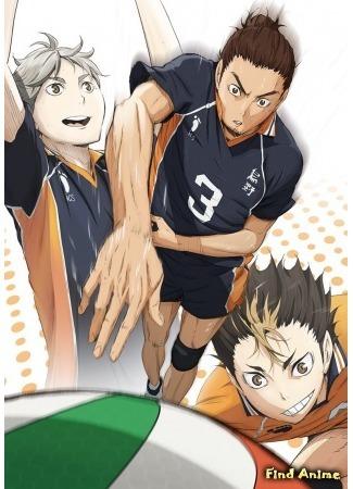 аниме Волейбол! 21.04.15