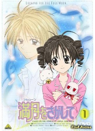 аниме В поисках Полной Луны OVA (Searching for the Full Moon: Cute Cute Adventure: Full Moon wo Sagashite: Cute Cute Adventure) 19.05.15