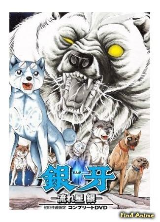 аниме Серебряный клык (Ginga: Nagareboshi Gin) 05.07.15