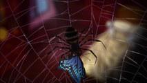 Тёмный дворецкий II: Паучий замысел